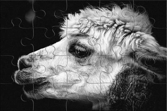 free jigsaw puzzles pieces screenshot 3