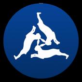 Libori Paderborn 2017 icon