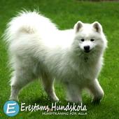 Erestams Hundskola icon