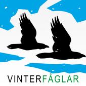 Vinterfåglar–BirdLife Sverige icon