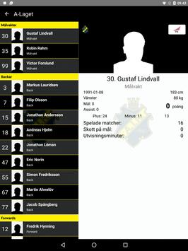 AIK Hockey screenshot 18