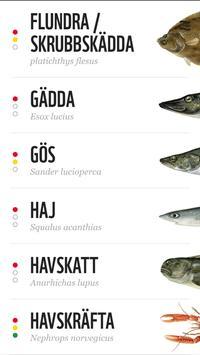 Fiskguiden apk screenshot