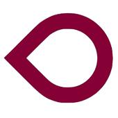 Viser icon