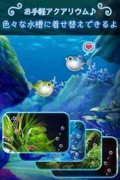 ぼくのフグさん水族館 【無料でかわいい育成ゲーム】 apk screenshot