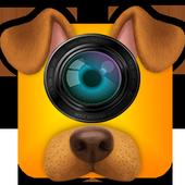 Free selfie camera editor, effect, emoji PRO icon
