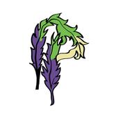 PimpPros icon