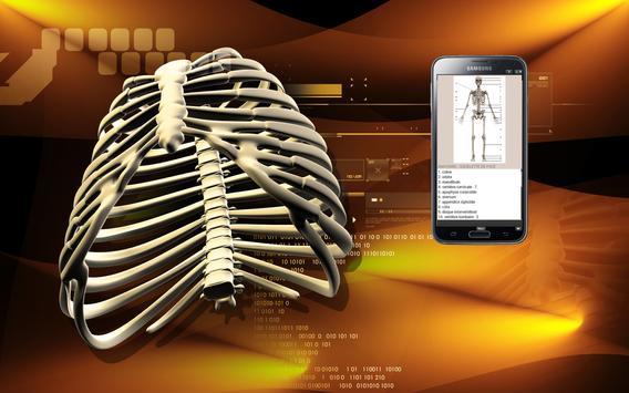 Le corps humain (évaluation) screenshot 13