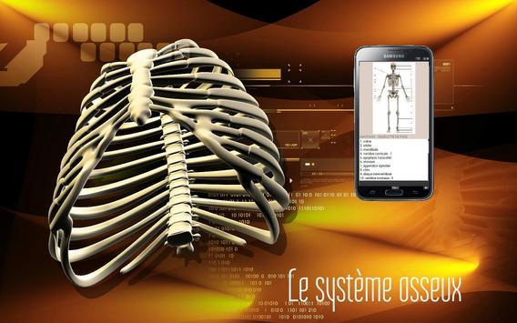 Le corps humain (évaluation) スクリーンショット 1
