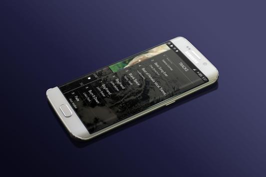 Shadow Player screenshot 3
