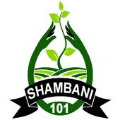 Shambani101 icon