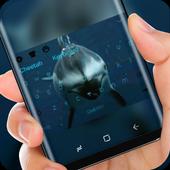 Shark Keyboard Theme icon
