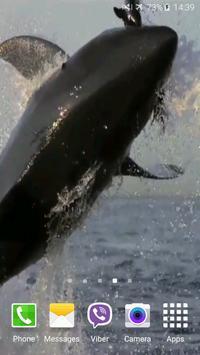 Shark Attack Live Wallpaper Screenshot 5