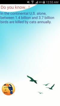 World of Birds apk screenshot