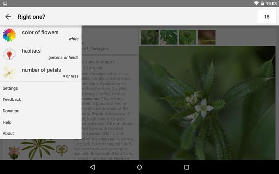 What's that flower? apk screenshot