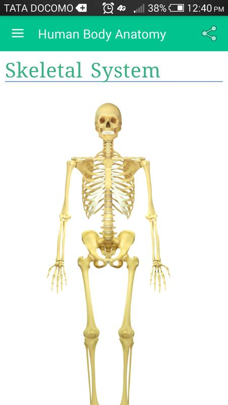 Human Body Anatomy 101 Apk Download Free Education App For Android