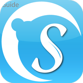 Guide for Skype icon