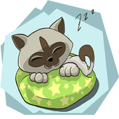 Sleep Day Wishes icon