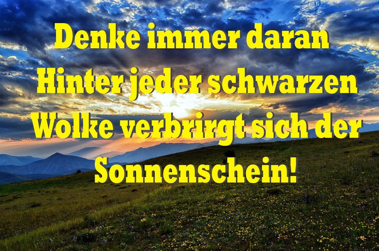Sprüche Leben Sprüche Und Zitate For Android Apk Download