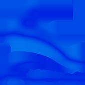AllFurRadio icon