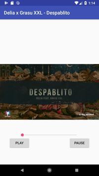 Delia x Grasu XXL - Despablito poster