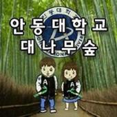 안동대학교 대나무숲 icon