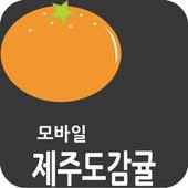 제주감귤 icon