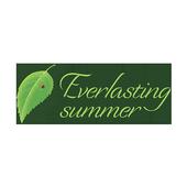 Everlasting Summer Zeichen