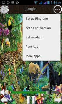 nature music apk screenshot
