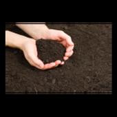 Soil Classification icon