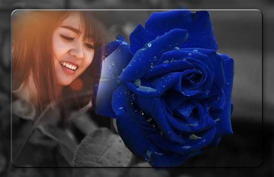 Blue Rose Photo Frames screenshot 4