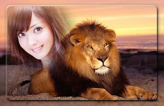 Lion Photo Frames poster
