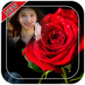 Red Rose Photo Frames icon