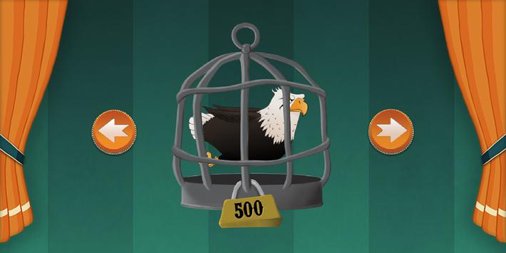 Bird Show screenshot 4