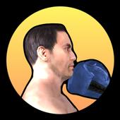 Concussion Boxing icon