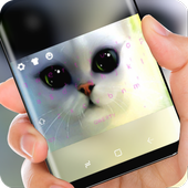 Poor eyes cat Keyboard icon