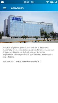 ADEX Asociados screenshot 2