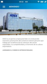 ADEX Asociados screenshot 9