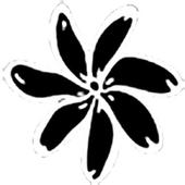 FenuaCine icon
