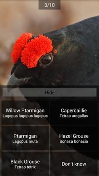 BirdID - European bird guide and quiz ảnh chụp màn hình 4