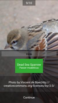 BirdID - European bird guide and quiz ảnh chụp màn hình 5