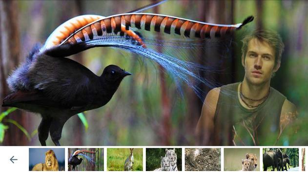 Wildlife Photo Frames screenshot 1