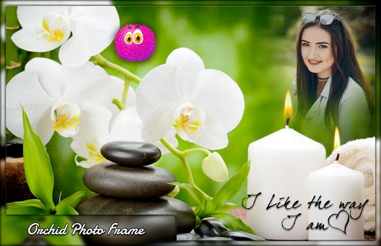 Orchid Photo Frames poster