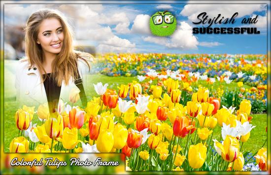 Colourful Tulips Photo Frames poster