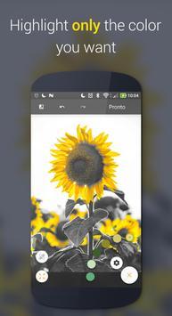 Paletta تصوير الشاشة 1