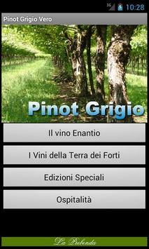 Pinot Grigio Vero poster