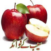 Saib Ke Faide icon
