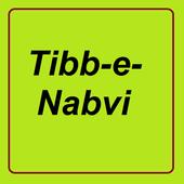 Tib_e_Nabvi icon