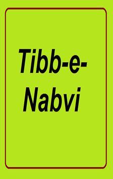 Tib_e_Nabvi poster