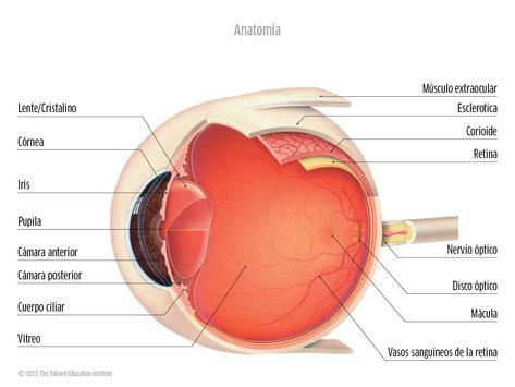 Oftalmología CAO poster