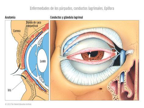 Oftalmología CAO screenshot 2